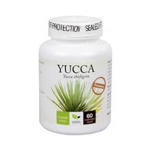 Yucca Premium